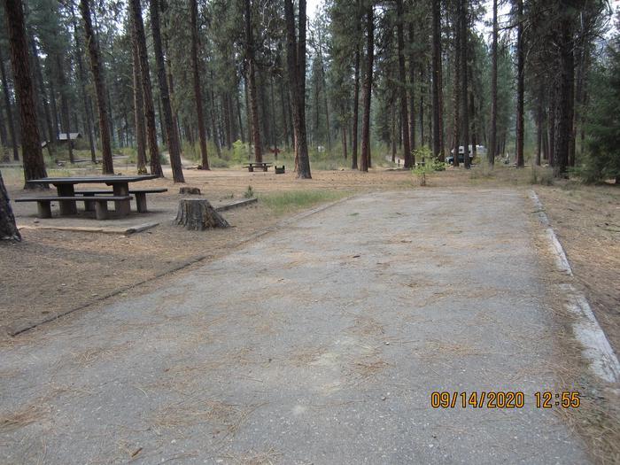 A long paved driveway next to a single campsite.Grayback Gulch Site 10 has a long, flat paved driveway.