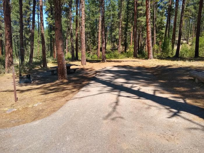 A moderately long paved driveway next to a single campsite.Greyback Gulch Site 11.