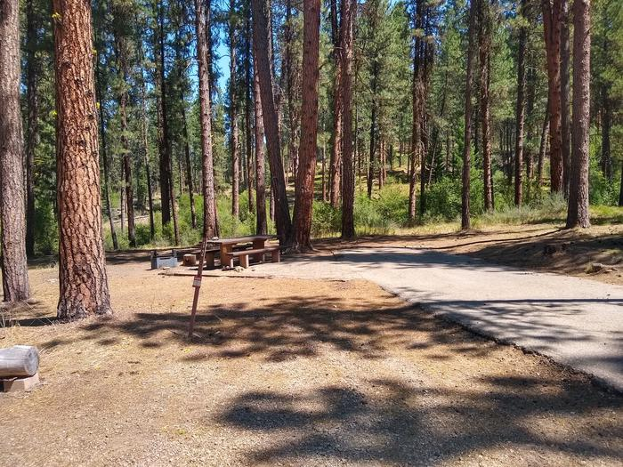 A paved driveway leading to a partially shaded single campsite.Grayback Gulch Site 12.