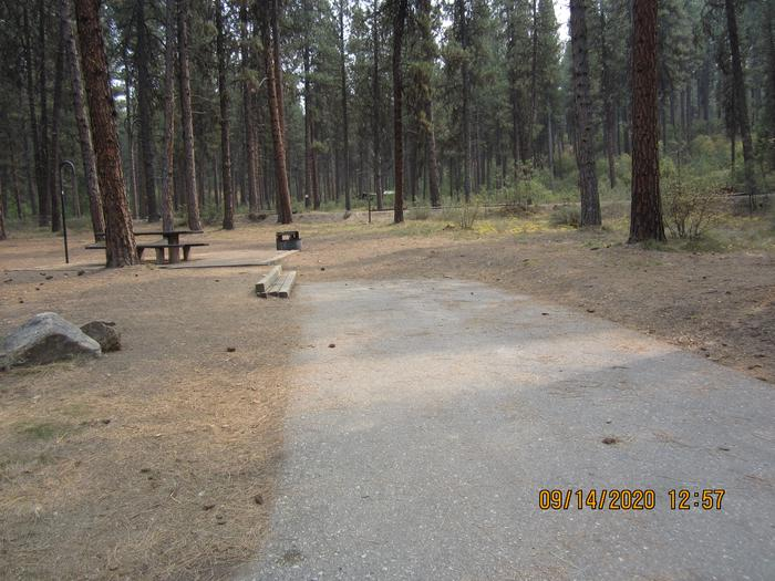 A paved driveway to a flat campsite.Grayback Gulch Site 14.