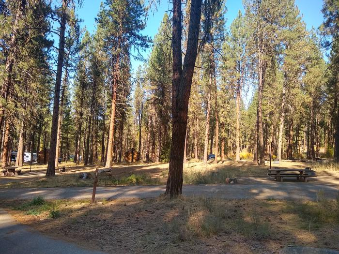A sideways view of a single campsite with a paved driveway.Site 16 at Grayback.