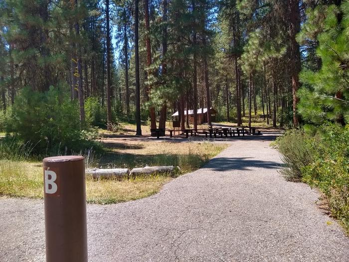 A paved path leading toward a group picnic area.Grayback Group B pathway.