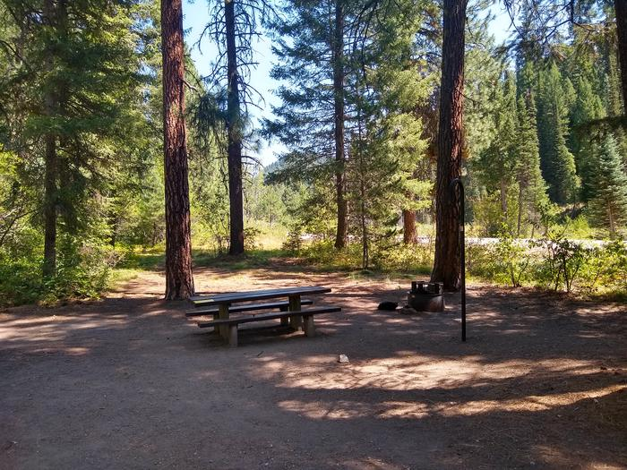 A shady camping spot next to a Highway 21.Site 1 at Bad Bear Campground.  Notice highway 21 is in the background.