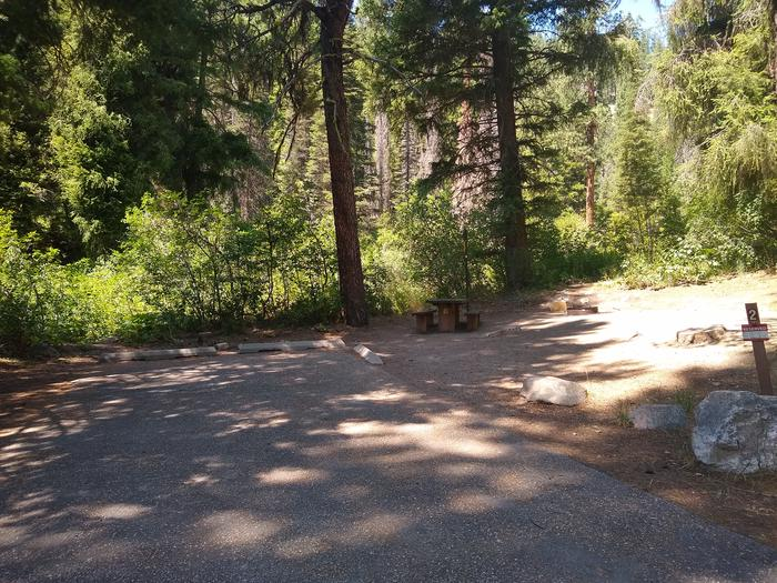 A single campsite with a shaded paved driveway.Bad Bear Site 2.