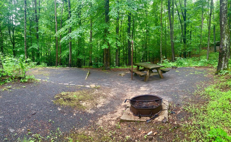 Campsite #1 side view Non-Reservable Campsite #1 Non-Reservable