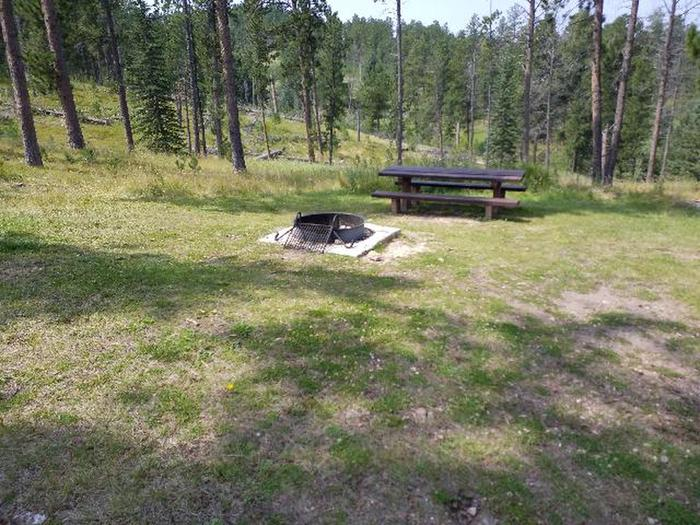 picnic table and fire ringWhitetail - site 3