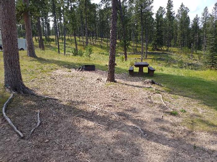 Picnic table and fire ringWhitetail - site 4