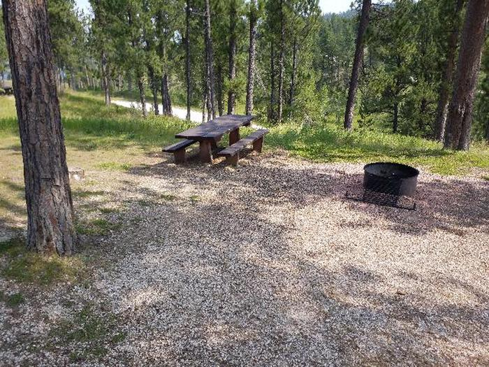 picnic table and fire ringWhitetail - site 8