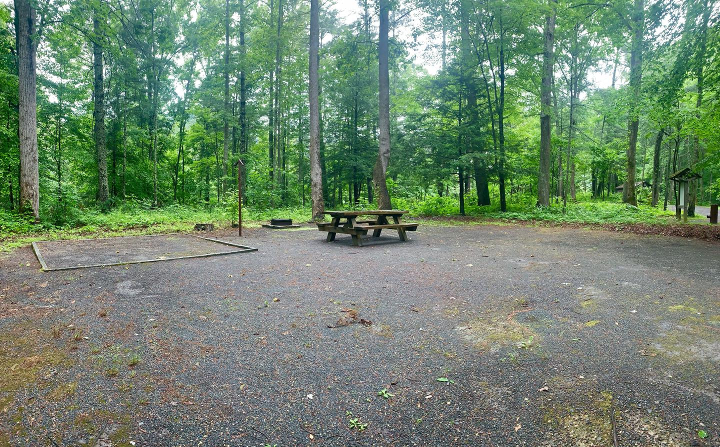 Campsite #3 Side View ReservableCampsite #3 Side View Reservable