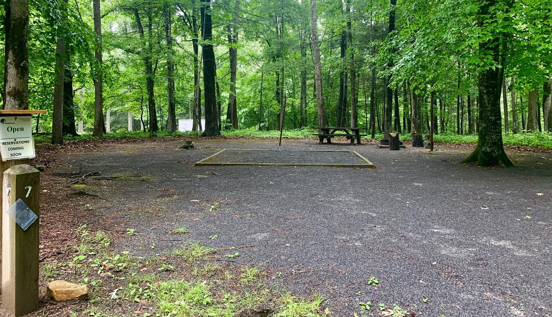 Campsite #7 Reservable