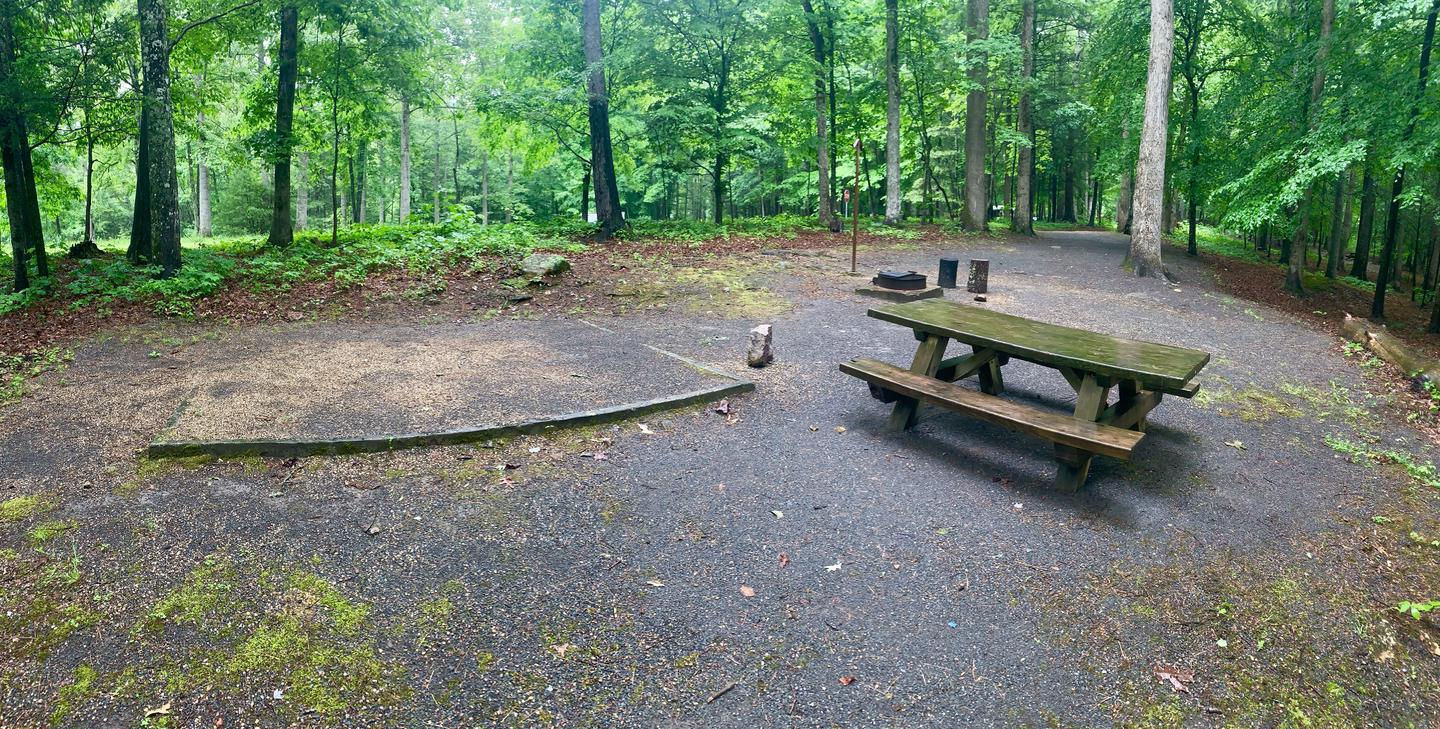 Campsite #9 Eating Area Reservable