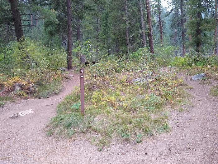 """A post numbered """"4"""" leading to a tucked away campsite.A looped path leads to Site 4, tucked away in the trees."""