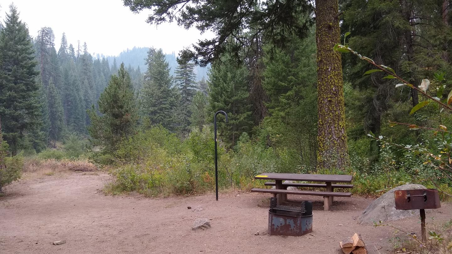 A campsite with a picnic table, lantern hook, and fire ring.Site 5, surrounded by trees.