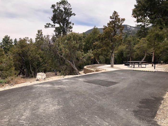 Hilltop Site 15Hilltop Site 15 is a spacious site the has tiered site pad and tent pad.