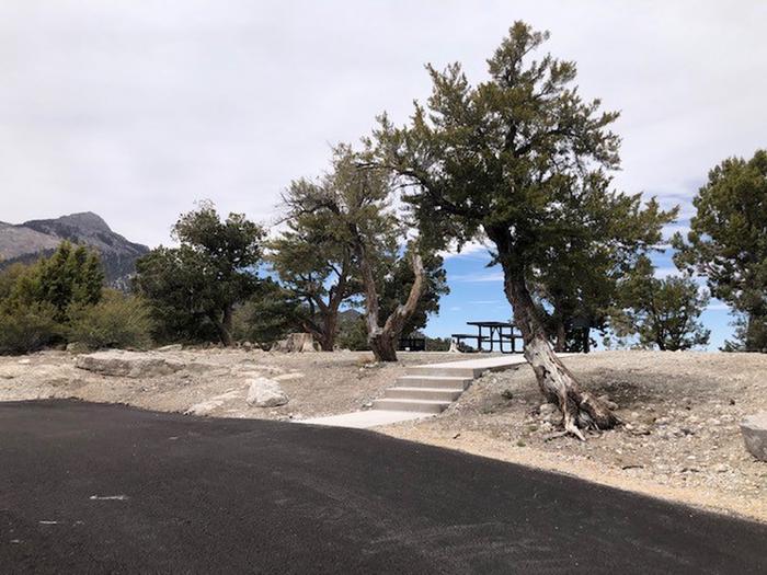 Hilltop Site 17Hilltop Site 17 walkway
