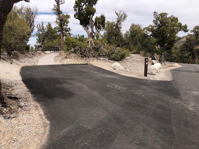 Hilltop Site 19 drive