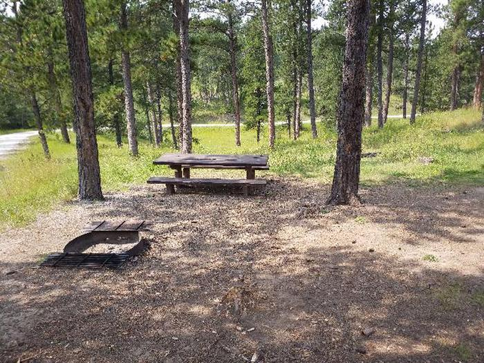 picnic table and fire ringWhitetail - site 17