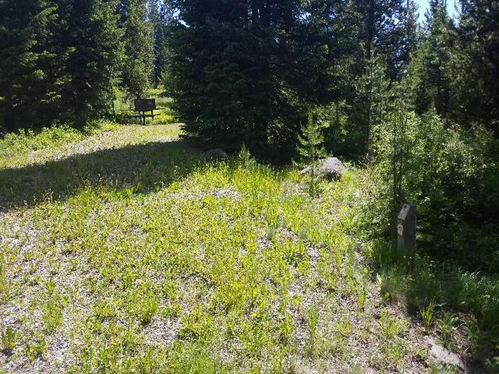 Threemile Campground Campsite 7 - Post next to grassy area; picnic table, and bear box Threemile Campground Campsite 7