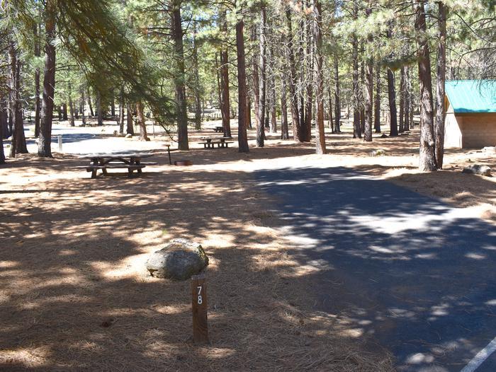 Site #78Merrill Campground, Site #78