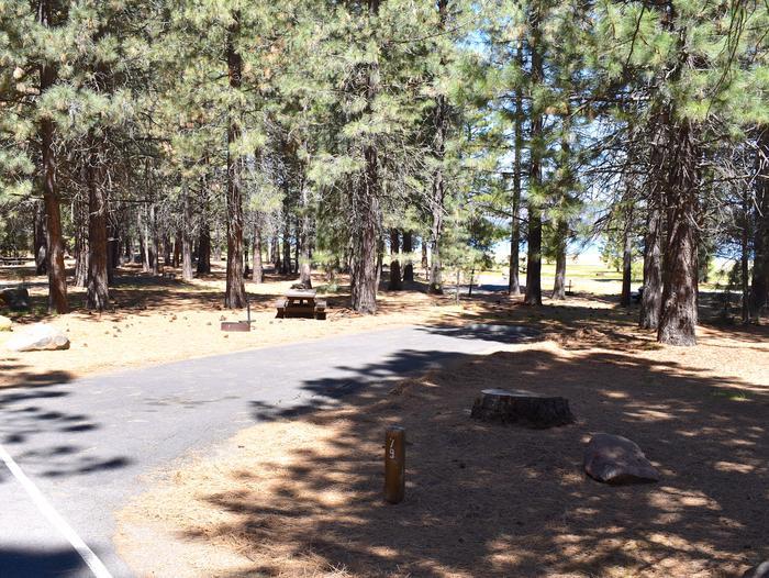 Site #79Merrill Campground, Site #79