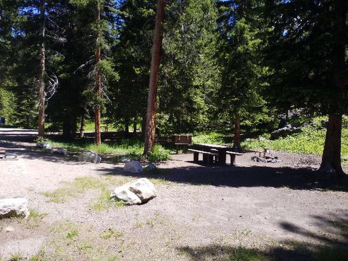 Hunter Peak Camp Site 6 picnic table and bear boxHunter Peak Camp Site 6