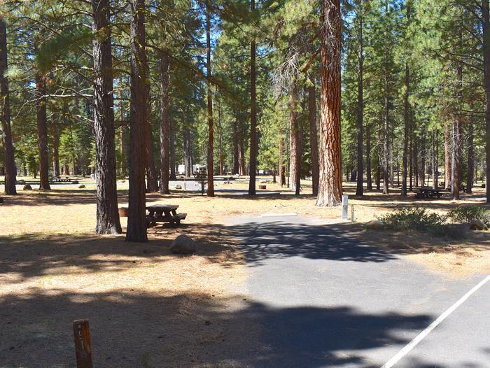 Site #51Merrill Campground, Site #51