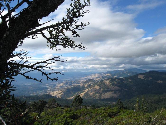 Hobart Bluff toward Grizzly Peak