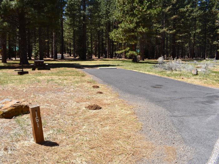 Site #161Merrill Campground, Site #161