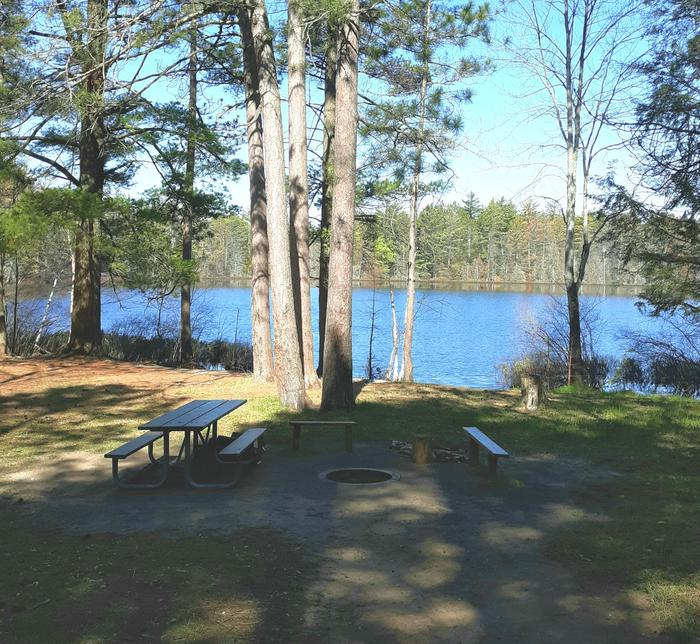 Tom's Lake Cabin - Fire RingFire Ring and Picnic Area
