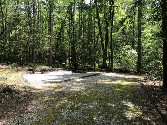 Large primitive back in site adjacent to creek.