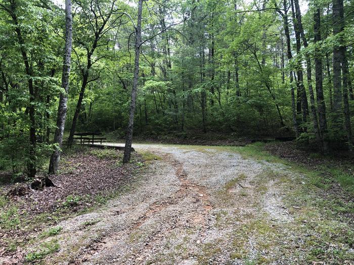 Large roadside primitive back in site