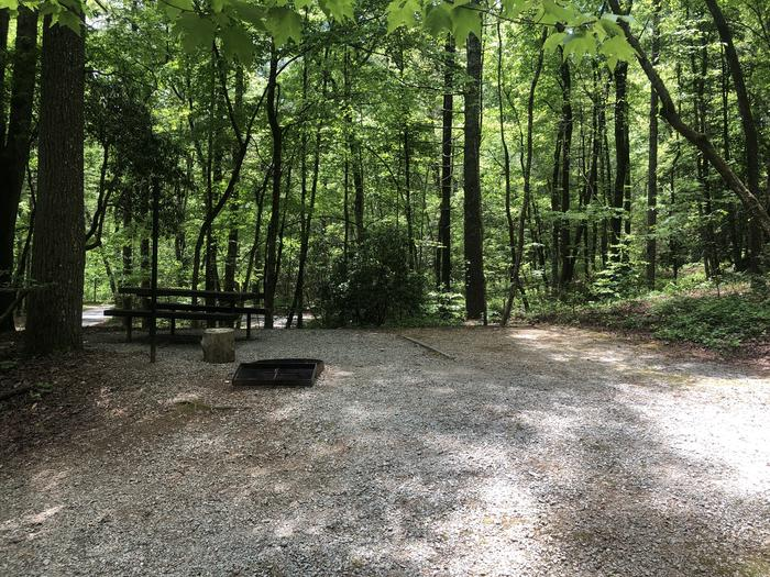 Large primitive walk up site. Shares driveway with site 33