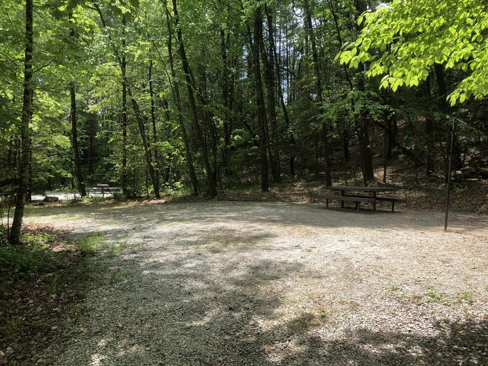 Large pull in primitive site.