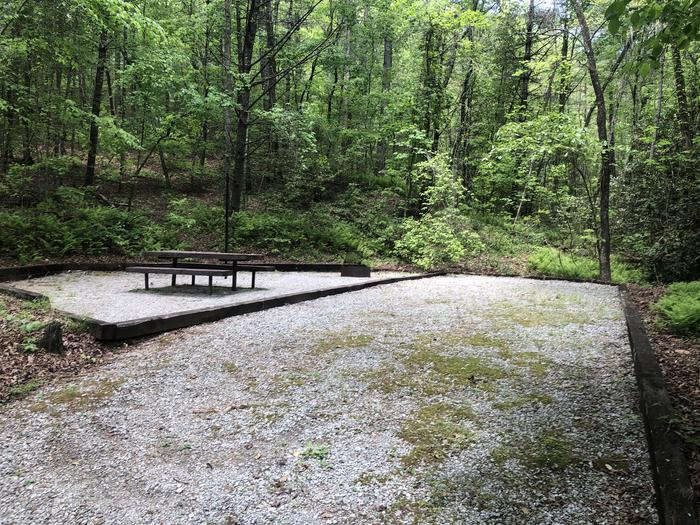 Large primitive back in site
