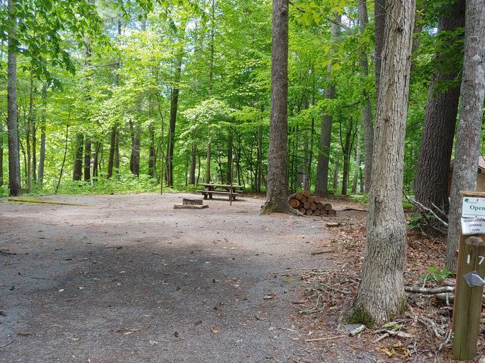 Campsite #17 Reservable