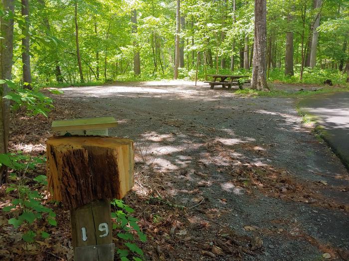 Campsite #19 Reservable