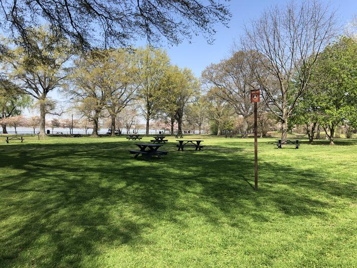The photo shows picnic benches on a grassy area with scattered trees.Picnic Area A