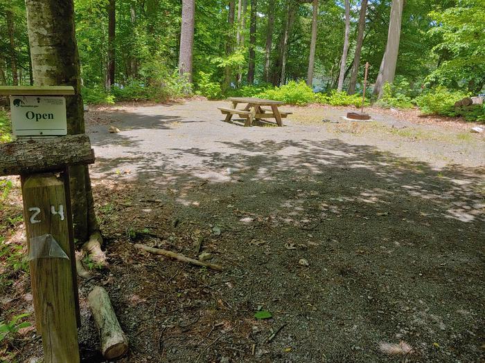 Campsite #24 Reservable