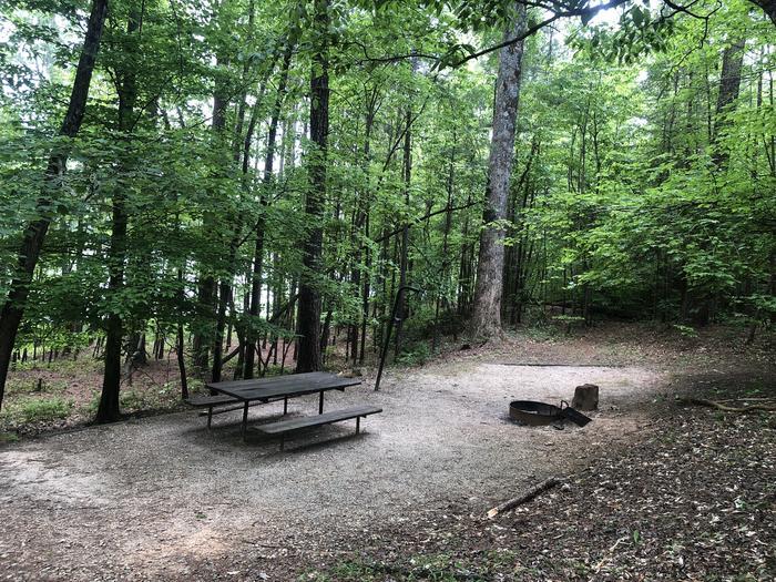 Small walk in lakeside primitive site