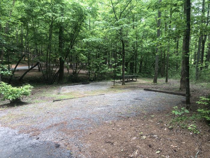 Large pull in primitive site adjacent to creek
