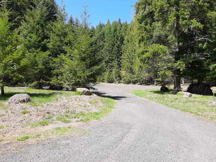 Lewis River ParkingAccess to Lewis River Trail via Quartz Creek Trail