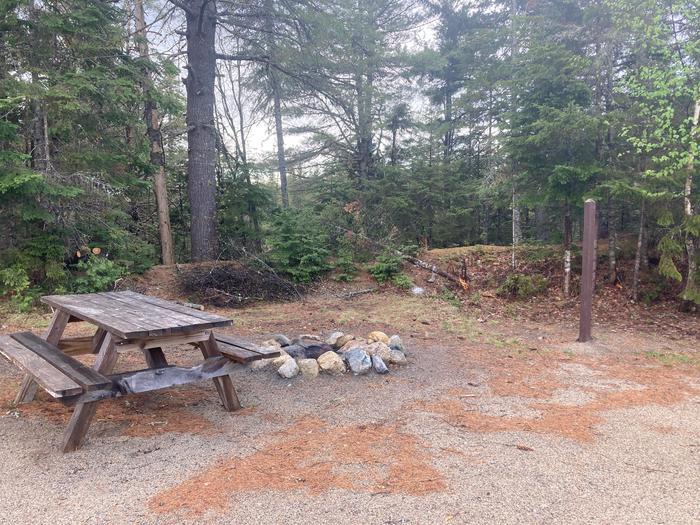 Sandbank Stream Picnic Table Fire RingPicnic table and fire ring at a Sandbank Stream Campsite.