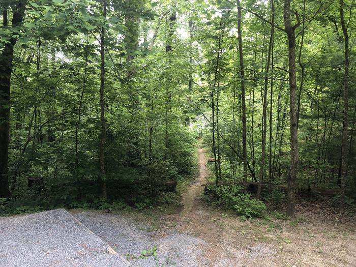 Lake access trail in rear of site