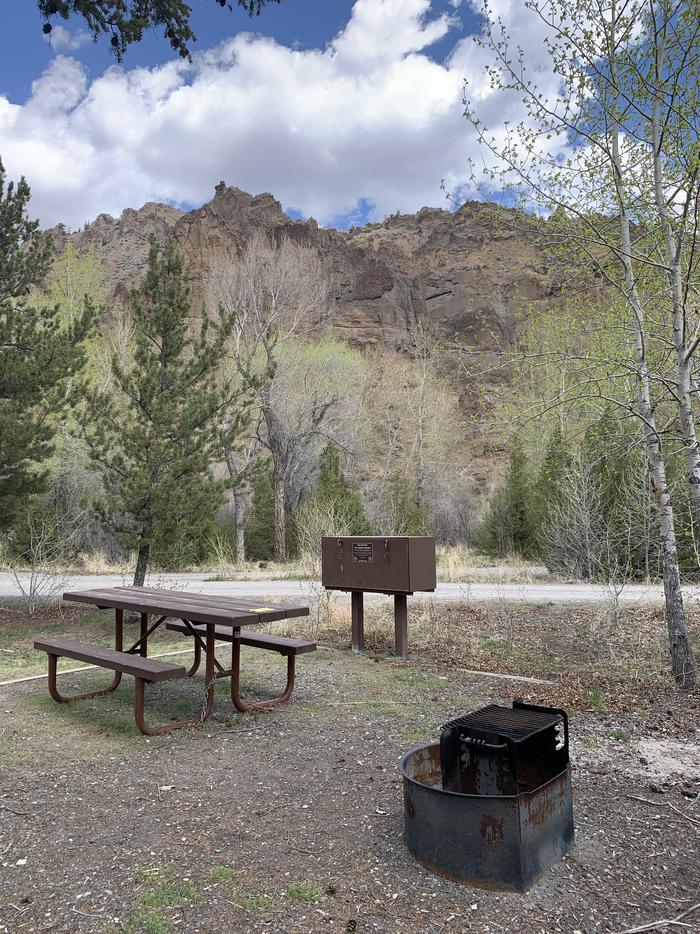 Campsite 13, close up picnic area, picnic table, fire ring, bear boxCampsite 13