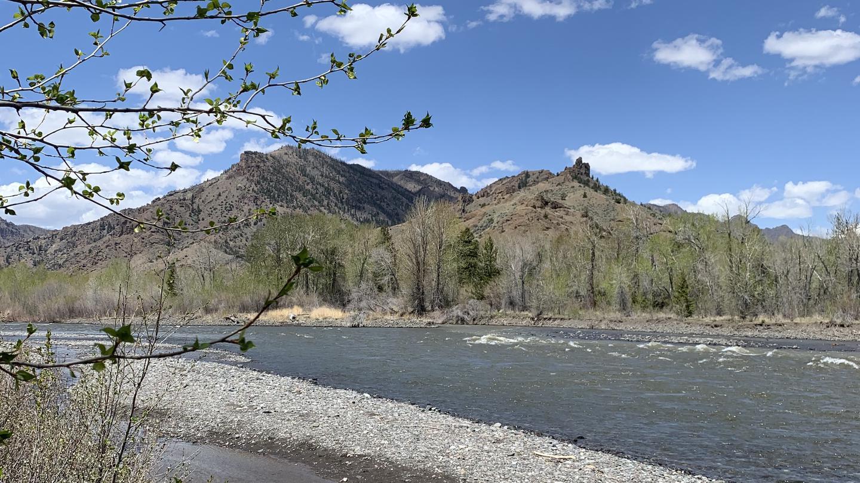 Wapiti Campground, North Fork Shoshone River,  mountains in backgroundNorth Fork Shoshone River at Wapiti Campground