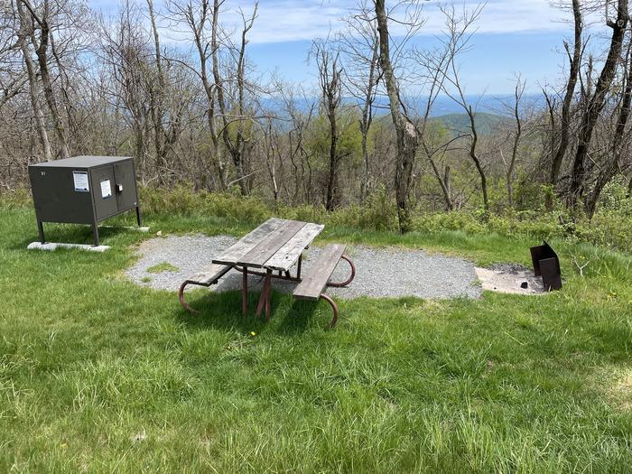 site with food storage locker,fire pit, and picnic table