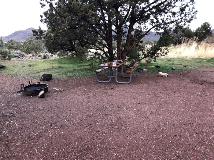 Site 5 Campsite Picnic Table and Fire Ring