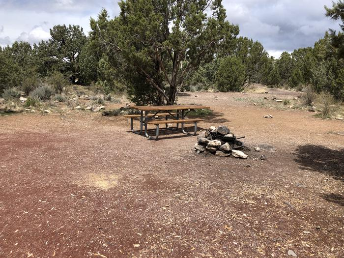 Site 14 CampsitePicnic Table and Fire Ring