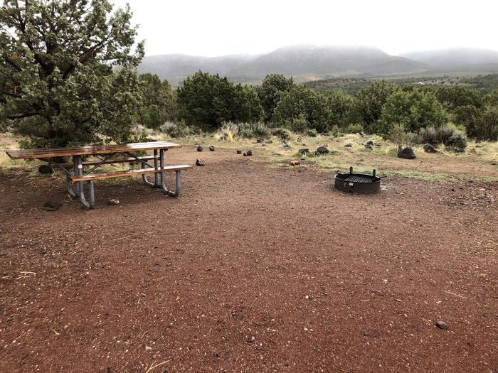 Site 10 CampsitePicnic Table and Fire Ring