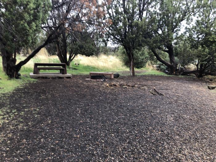 Site 2 CampsitePicnic Table and Fire Ring